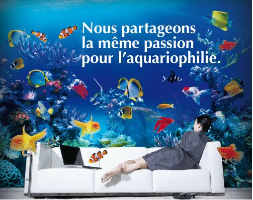 Les bienfaits de l'aquariophilie